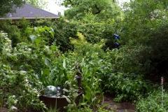 GSMD_GardenTour-14