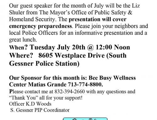 ApartmentP.I.P. Meeting, July 20